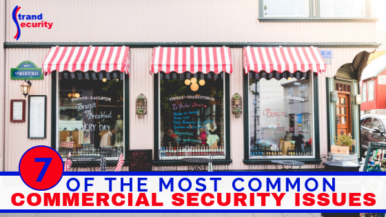 common commercial security issues