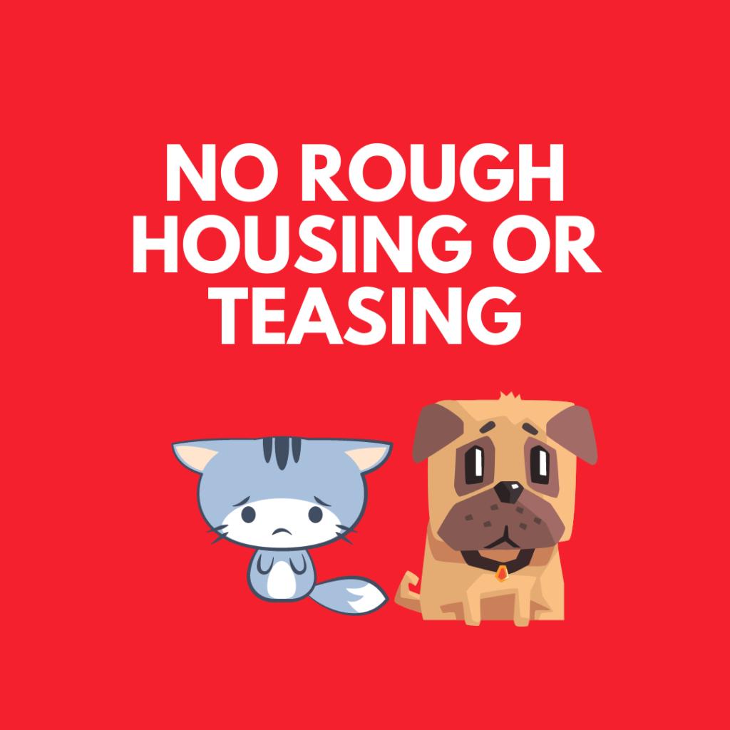kids should not tease pets